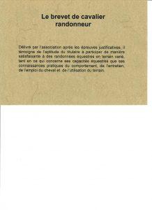 brevet cavalier rando2